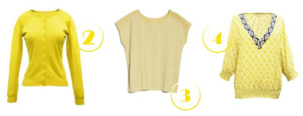 amarillo-amiaire